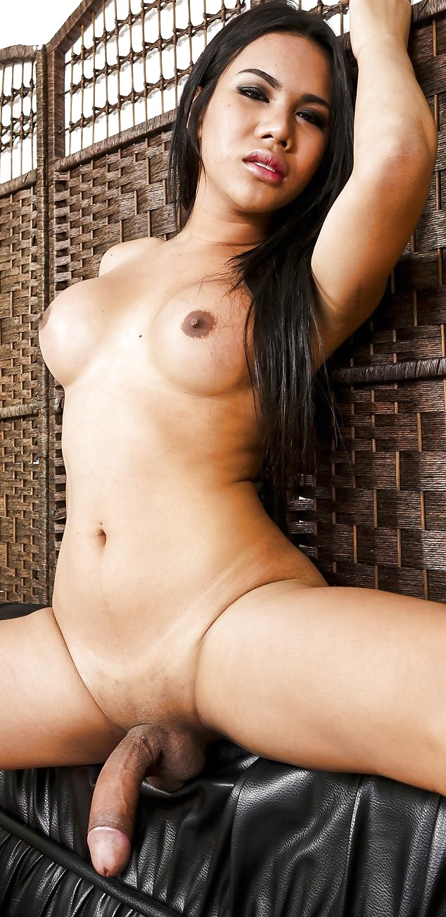 Thai ladyboy big cock