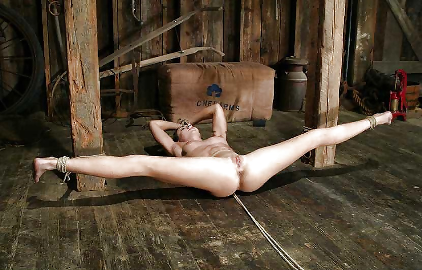 Nude females tied up for slaves and sex