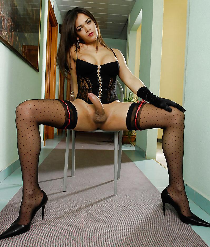 video Shemale dominatrix