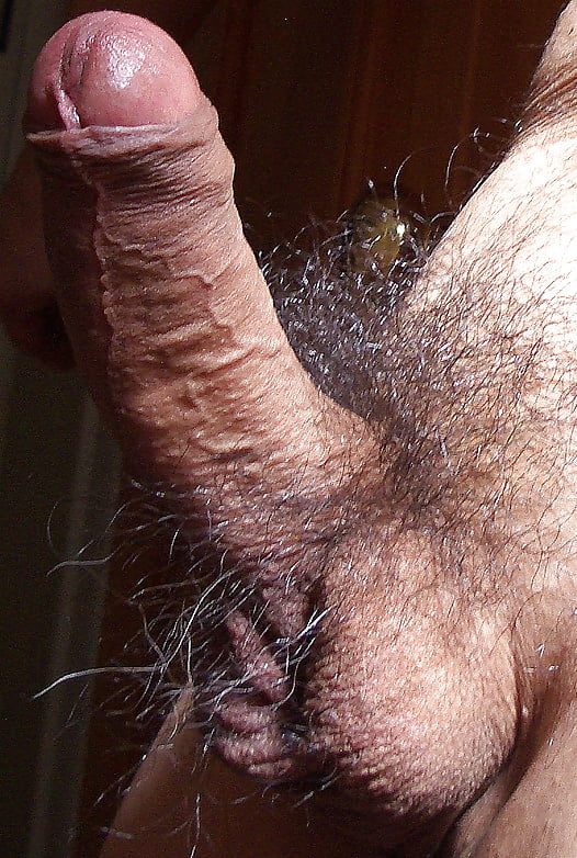 Fat hairy porn