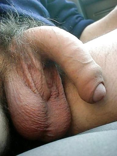 Big Hairy Cock