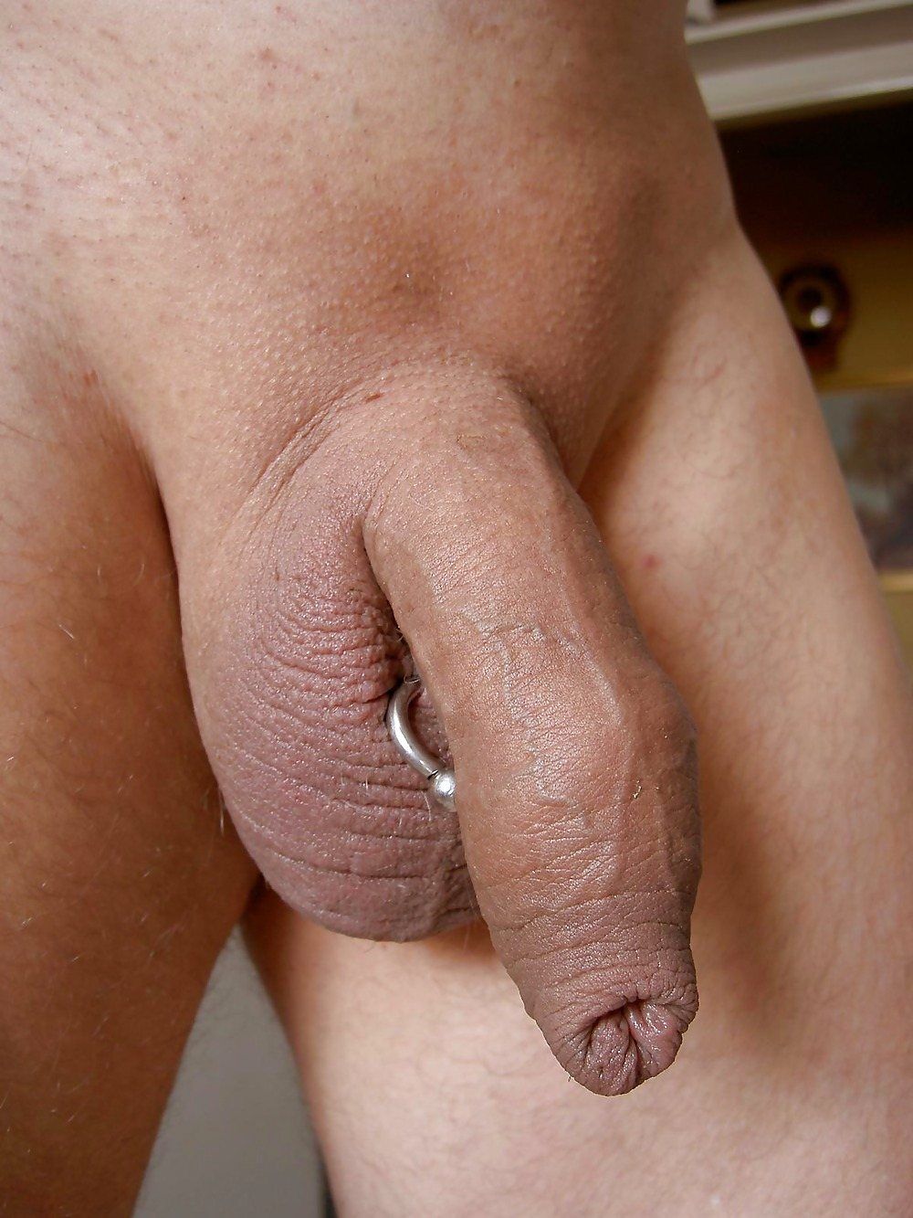 Pierced Cock Tumblr