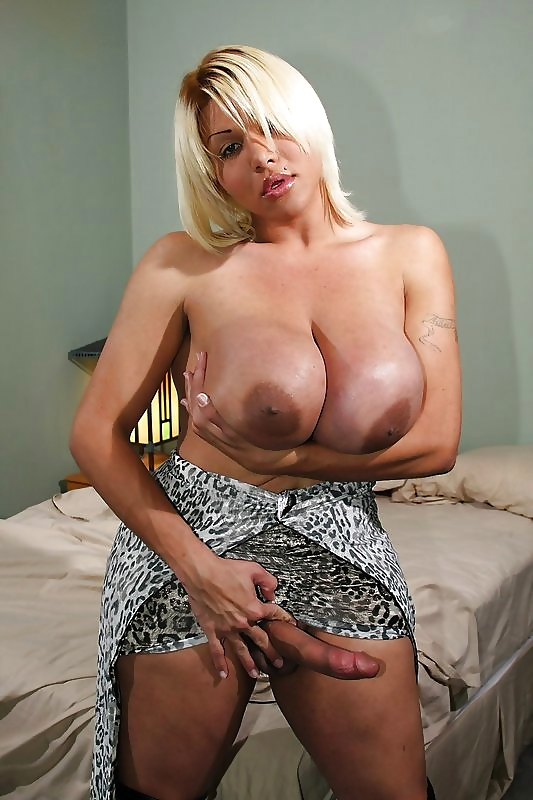 Sexy shemale with big tits 15