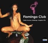 Flamingo Club - Fields Avenue, Balibago, Angeles City (2)