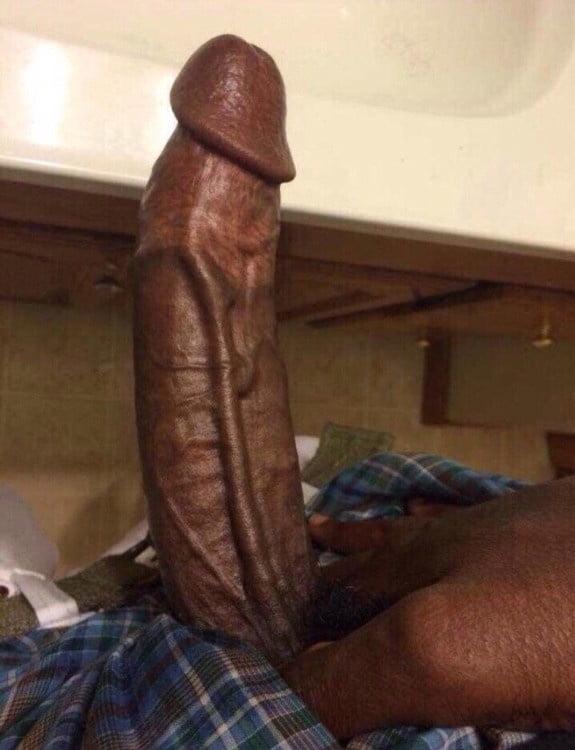 my-big-black-cock-thumbnails-l