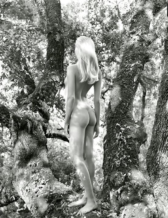 Lingerie models naked