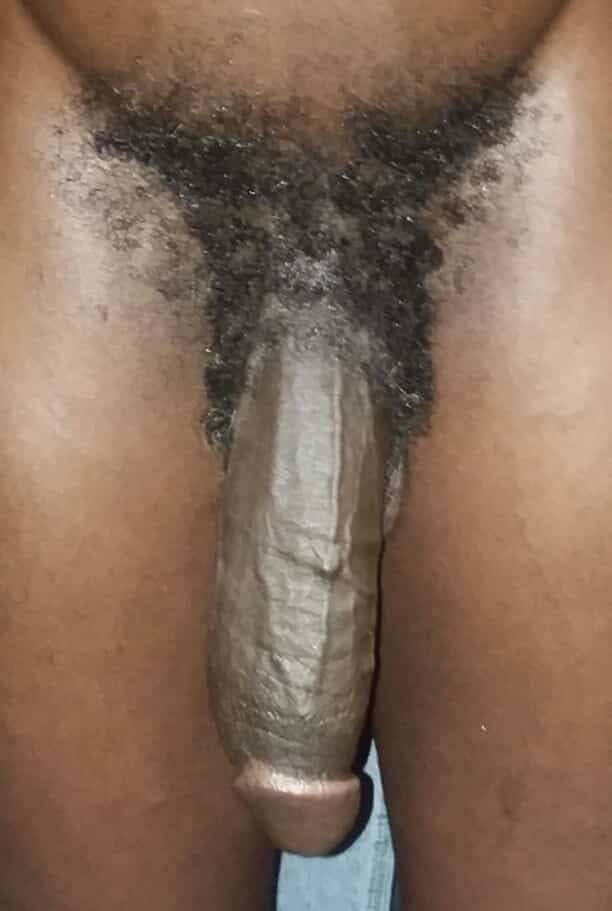 Black bbw big dick