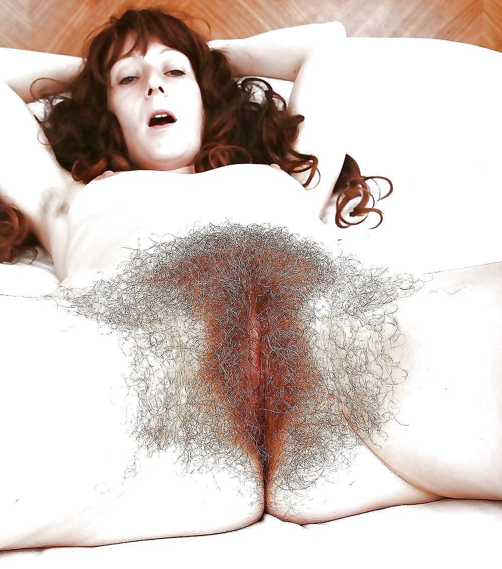My Neighbors Hairy Pussy