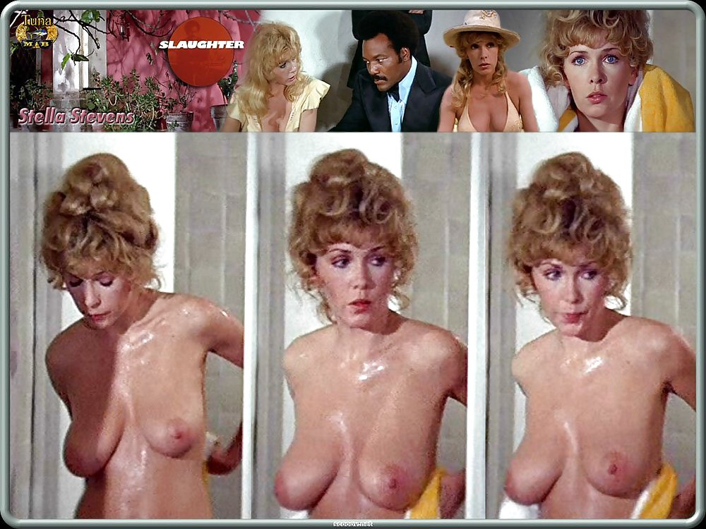 stella stevens nude  photo