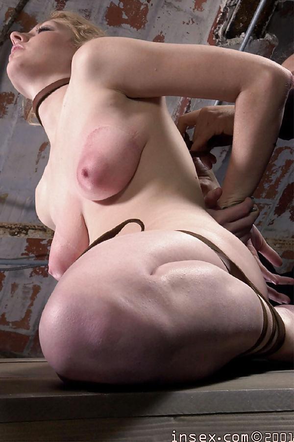 Insex