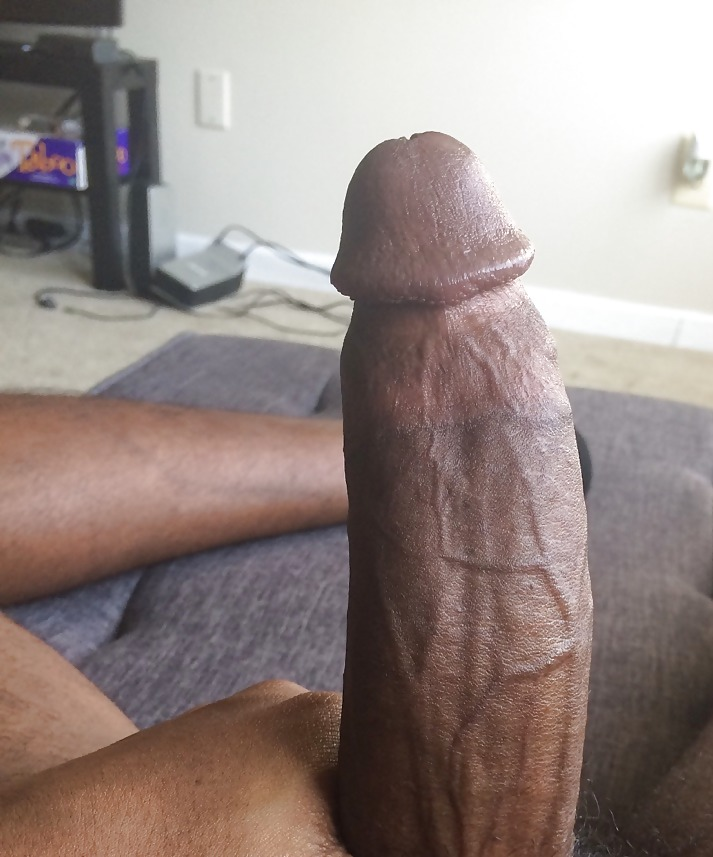 Very long penis on this hairy man