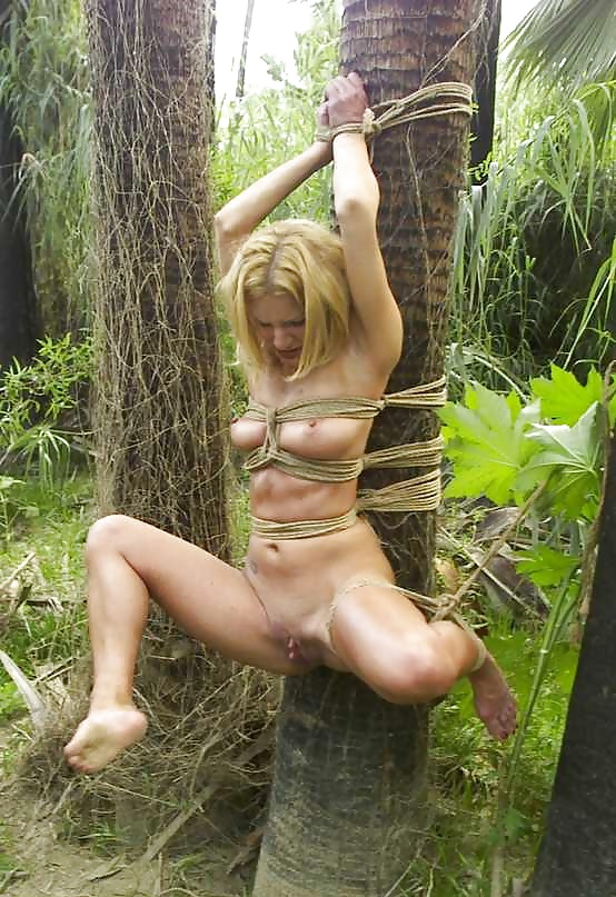 телку привязали к дереву и трахнули