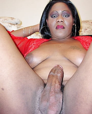 shemales Fat black bbw