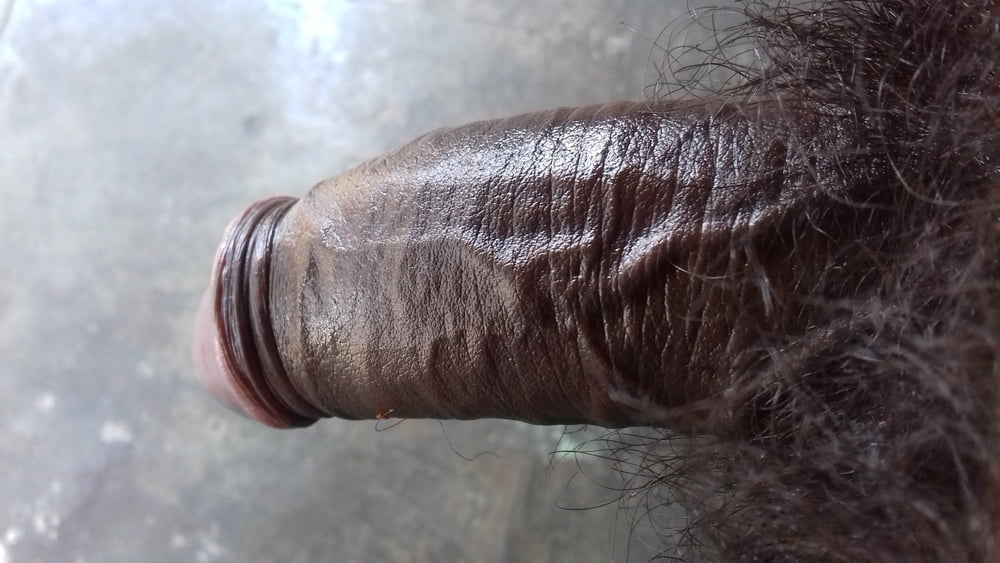 Indian cock gallery- 6 Pics