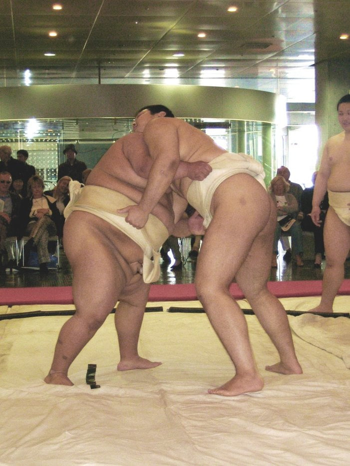 сможете смотреть порно сумо смотреть был