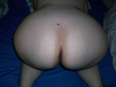 bbw fat ass donk