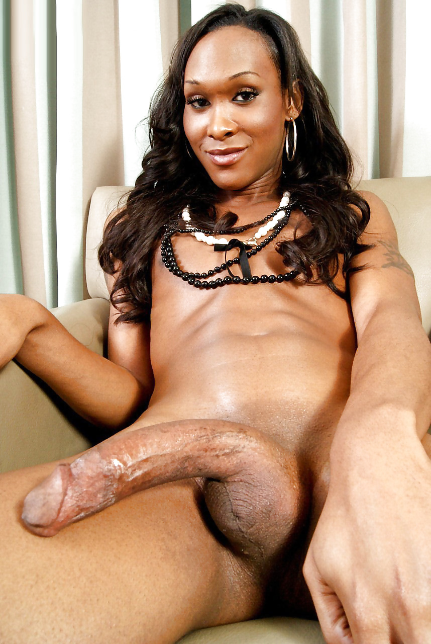 Black tranny with big dicks